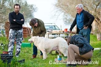 ritratto campagna famiglia con cani, countryside portrait of family with dogs